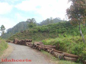 Jalan Kalibening.
