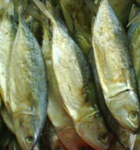 Jui atau Ikan Asin.