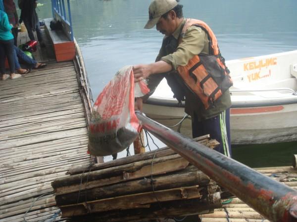 Tambak Ikan