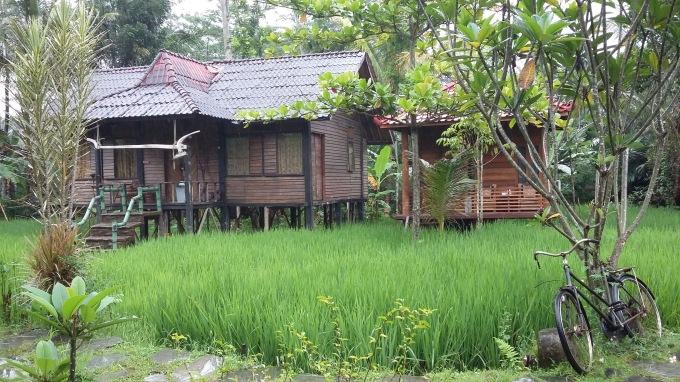 Alamat The Pikas Resort