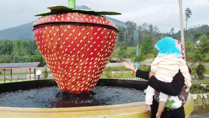 strawberry_serang[2]
