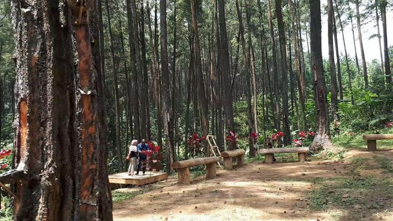 Kampung Damar Banjarnegara 2