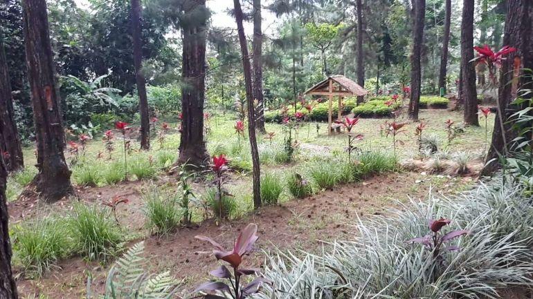 Kampung Damar Banjarnegara 4