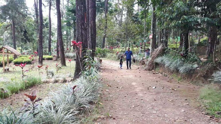 Kampung Damar Banjarnegara 6